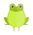 Australian green tree frog isolated on white vector image