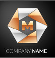 letter m logo symbol in the colorful hexagon on vector image