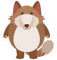 brown fox with happy face vector image