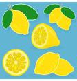 Set of lemon on blue background vector image