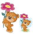 teddy bear holding a pink flower in the vector image