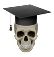skull with cap graduate on white background vector image