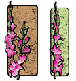 two long orchids clip art vector image