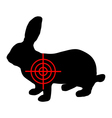 Hare crosslines vector image vector image