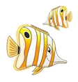 Cartoon tropical marine butterflyfish character vector image