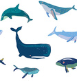 Whales seamless pattern graphic handdrawn vector image vector image