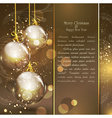 holiday gold vector image