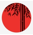 Bamboo trees and leaves with red sun on white vector image