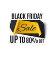 black friday sale banner isolated on white vector image