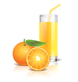 object orange juice vector image vector image