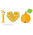 i love quinces vector image