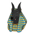 color image anubis vector image