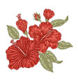 red hibiscus flowers and leaves in vintage style vector image