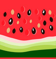 watermelon close up vector image