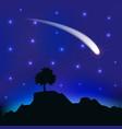 Flying comet in the night sky vector image