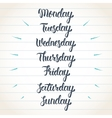 Hand lettering days of the week Calligraphic set vector image