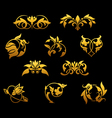 vintage golden florals set vector image