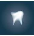 Tooth icon for dentists business vector image