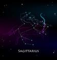 saggitarius vector image