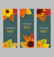 set autumn vertical banners for sale vector image