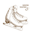 sketch os skates isolated on white background vector image