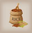 brown natural long rice in small burlap sack vector image