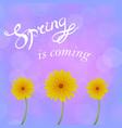 spring lettering design vector image