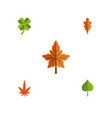 flat icon leaves set of alder aspen linden and vector image