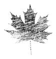 Black Grunge Maple Leaf vector image vector image