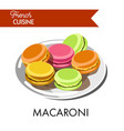 delicious colorful macaroni from french cuisine on vector image