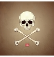 Human Skull and Bones on Old Paper Background vector image