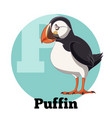 abc cartoon puffin vector image vector image