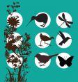 kiwi bush vector image vector image
