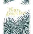 Design background with leaves of palm trees in vector image