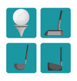 sport golf clubs and ball set vector image