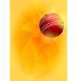 Cricket card vector image
