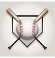 Baseball bat homeplate vector image