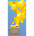 Cash purse with money vector image