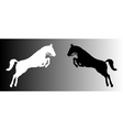 silhouette of horses vector image