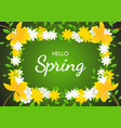 hello spring on flowers frame background vector image