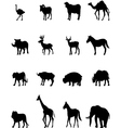 animal silhouette vector image vector image