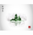 island with green pine trees in fog traditional vector image