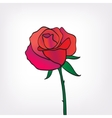 red rose icon isolated vector image