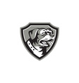 Rottweiler Guard Dog Shield Black and White vector image