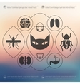 veterinary infographic with unfocused background vector image