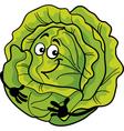 cute cabbage vegetable cartoon vector image