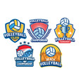 volleyball badge design set vector image