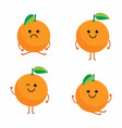 set cartoon oranges vector image