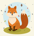 cartoon fox wild animal with falling leaves vector image