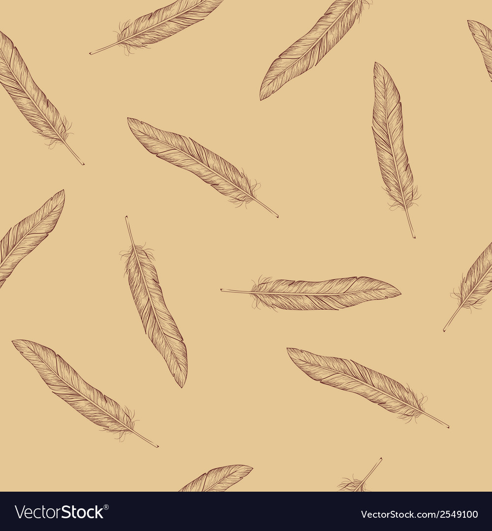 Seamless with feathers vector